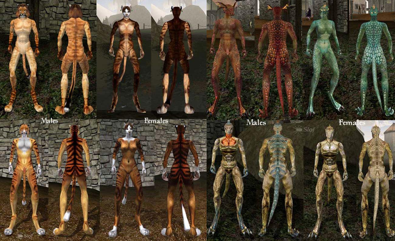 Расы и компаньоны, Part 1. Ваш MustHave набор плагинов для Morrowind. - ВК